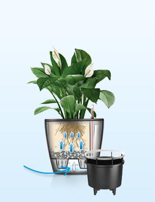removable planter liner