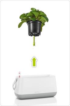 YULA plant bag - proven system
