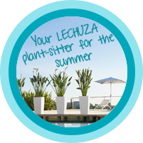 Your LECHUZA plant sitter for the summer