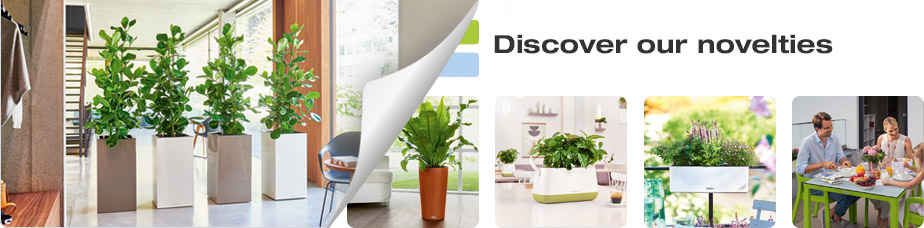 Discover our novelties